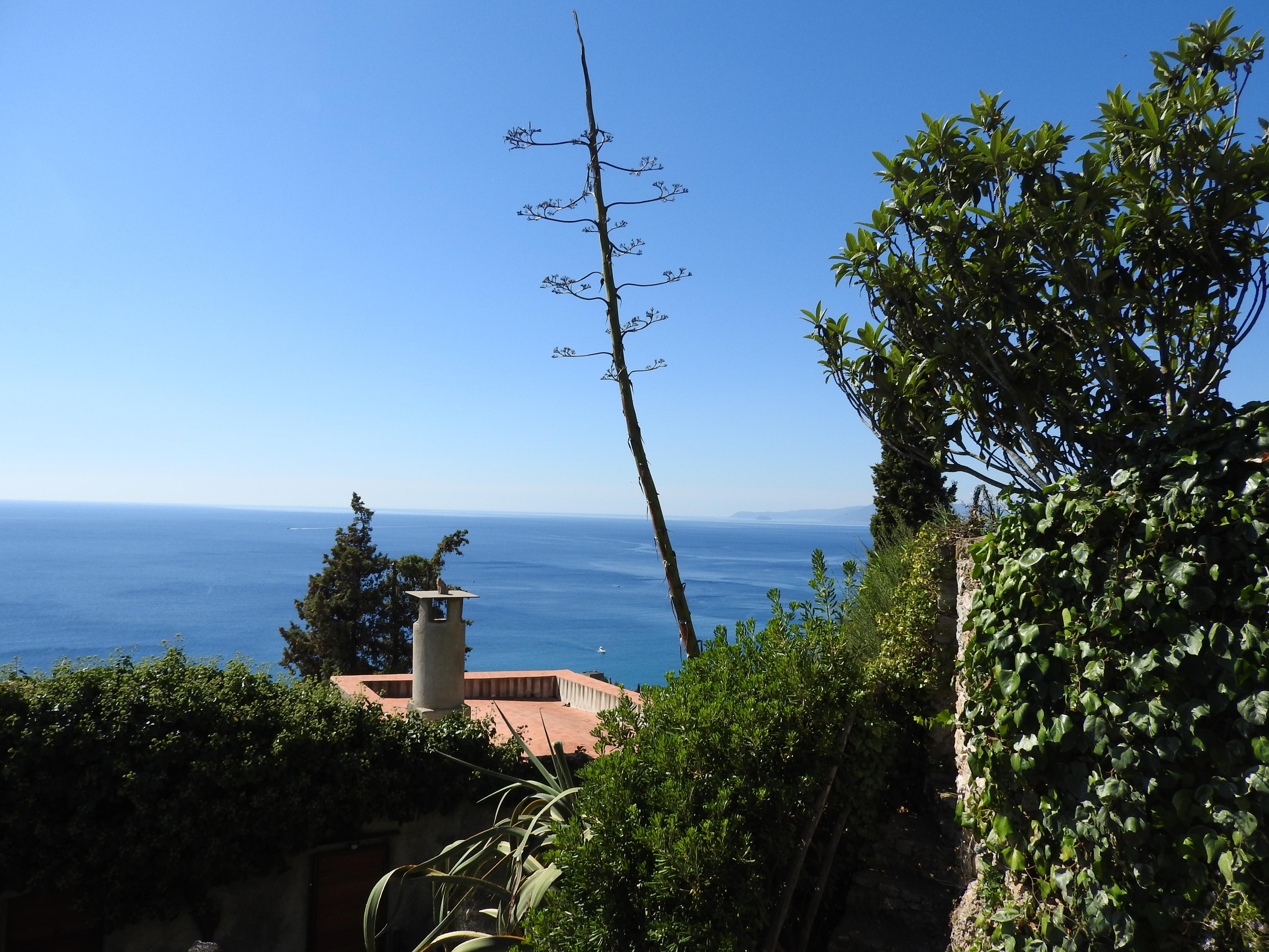 Belvedere sul mare